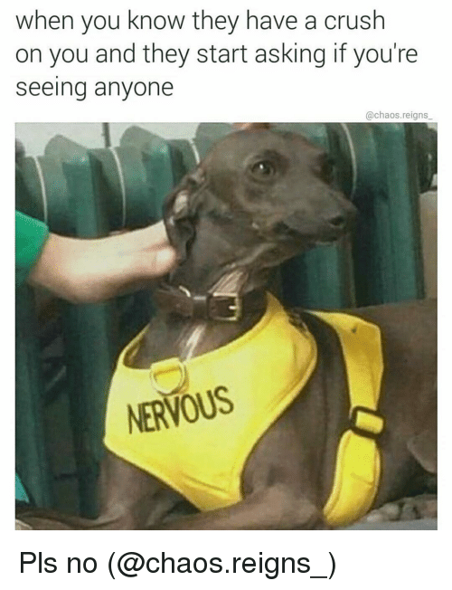 Crush, Memes, and 🤖: when you know they have a crush  on you and they start asking if you're  Seeing anyone  @chaos reigns  NERVOUS Pls no (@chaos.reigns_)
