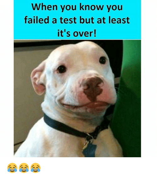 Memes, Test, and 🤖: When you know you  failed a test but at least  it's over! 😂😂😂