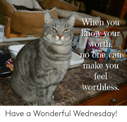 Memes, Wednesday, and 🤖: When you  know-your  worth  no one can  make you  feel  worthless. Have a Wonderful Wednesday!