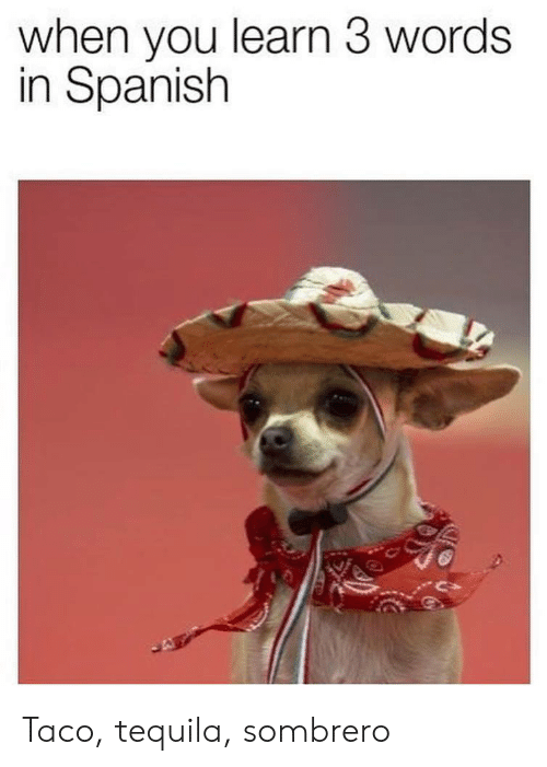 When You Learn 3 Words in Spanish Taco Tequila Sombrero