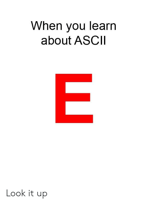 When You Learn About ASCII Look It Up   Ascii Meme on ME ME