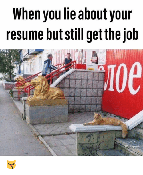 Memes, Express, and Resume: When you lie about your  resume but still get the job  10e  Express 😽