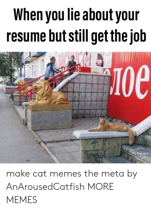 Anaconda, Dank, and Memes: When you lie about your  resume but still get thejob  100  Express make cat memes the meta by AnArousedCatfish MORE MEMES