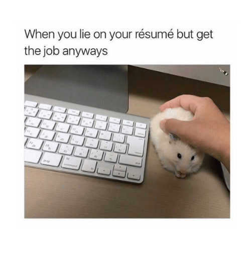 When You Lie On Your Resume But Get The Job Anyways Meme On Me Me