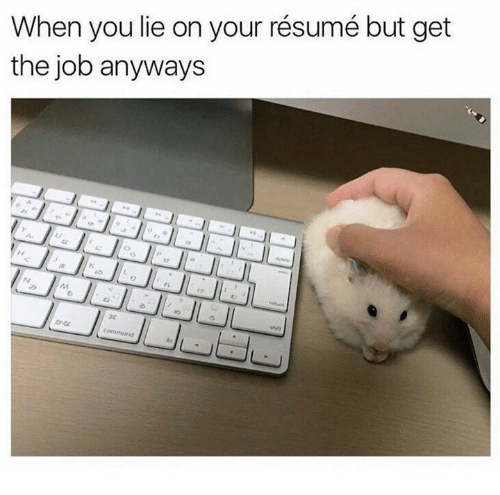 When You Lie On Your Resume But Get The Job Anyways Meme On Sizzle