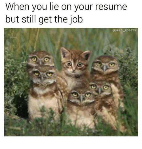 25 best memes about when you lie on your resume when