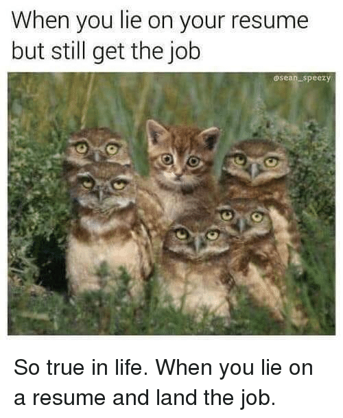 25  best memes about when you lie on your resume