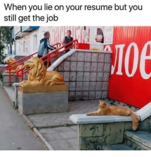 Memes, Resume, and 🤖: When you lie on your resume but you  still get the job  10e