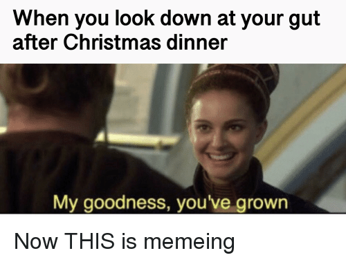 Christmas, Down, and You: When you look down at your gut  after Christmas dinner  My goodness, you've grown