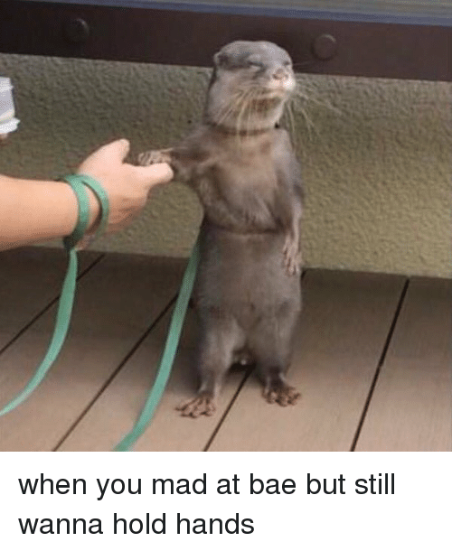 when you mad at bae but still wanna hold hands 14918763 ✅ 25 best memes about when you mad at bae when you mad at bae,Still Mad Meme