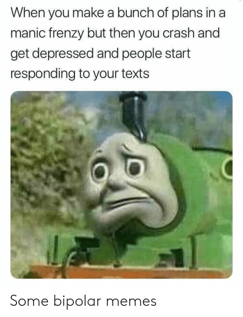 Memes, Bipolar, and Texts: When you make a bunch of plans in a  manic frenzy but then you crash and  get depressed and people start  responding to your texts Some bipolar memes