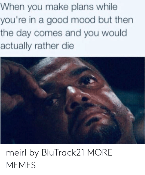 Dank, Memes, and Mood: When you make plans while  you're in a good mood but then  the day comes and you would  actually rather die meirl by BluTrack21 MORE MEMES