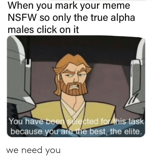 Click, Meme, and Nsfw: When you mark your meme  NSFW so only the true alpha  males click on it  You have been selected for ihis task  because you are the best, the elite. we need you
