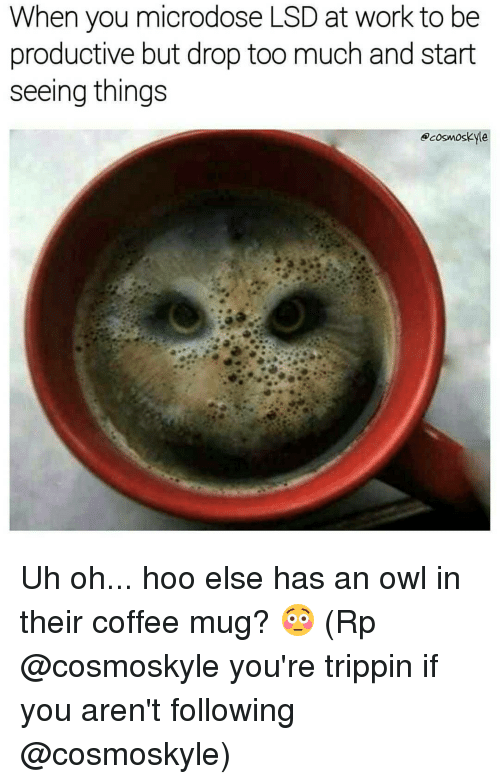 Memes, 🤖, and Lsd: When you microdose LSD at work to be  productive but drop too much and start  seeing things  @cosmos Kyle Uh oh... hoo else has an owl in their coffee mug? 😳 (Rp @cosmoskyle you're trippin if you aren't following @cosmoskyle)