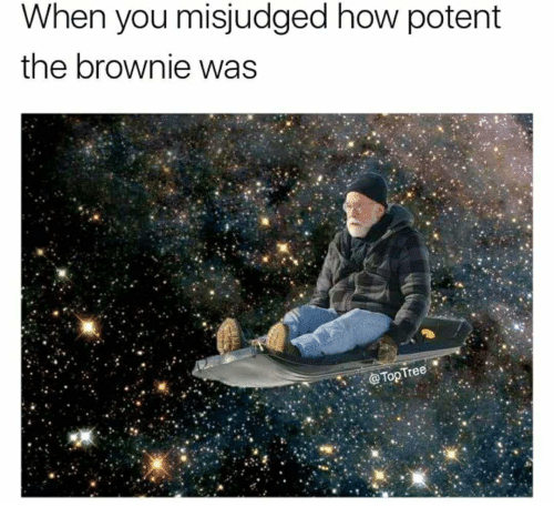 When You Misjudged How Potent the Brownie Was Tree | Tree