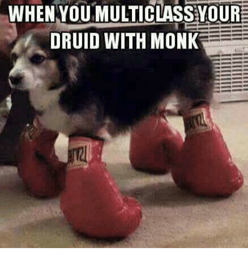 WHEN YOU MULTICLASS YOUR DRUID WITH MONK | Monk Meme on ME ME