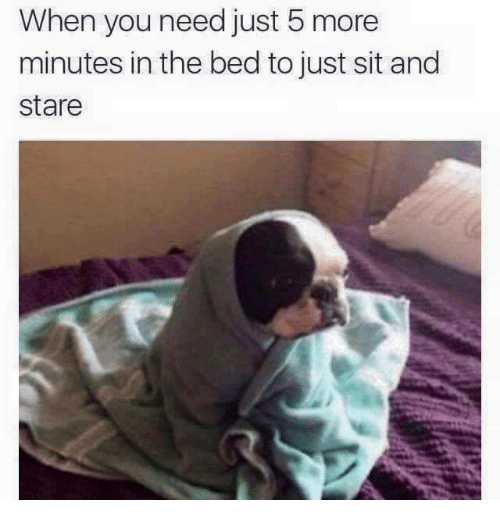 Memes, 🤖, and You: When you need just 5 more  minutes in the bed to just sit and  stare