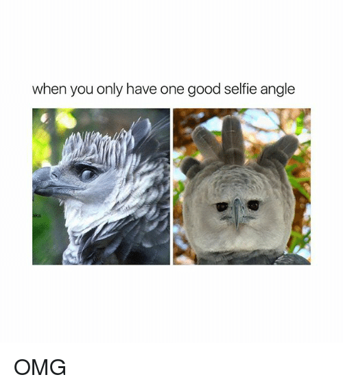 Omg, Selfie, and Good: when you only have one good selfie angle  ka OMG