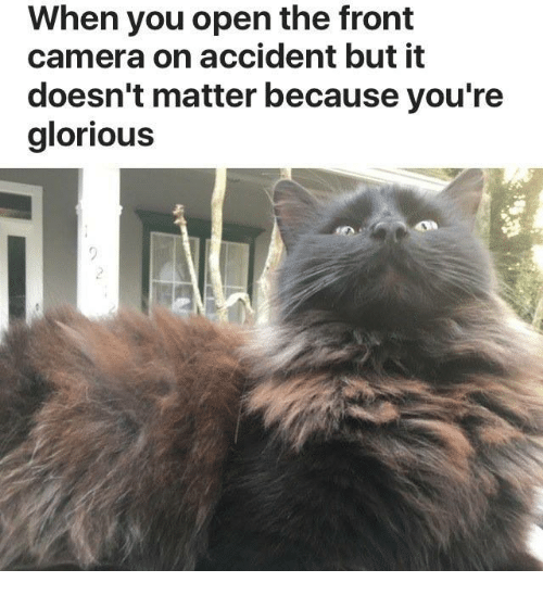 Dslr Camera Funny Quotes: 25+ Best Memes About Glorious