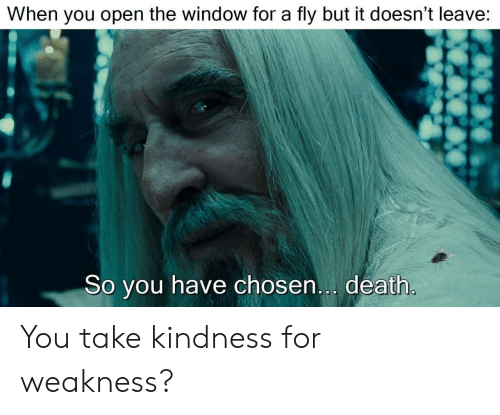 Death, Kindness, and Open: When you open the window for a fly but it doesn't leave:  So you have chosen... death You take kindness for weakness?