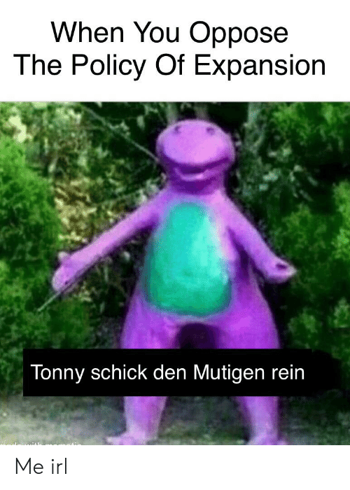 Irl, Me IRL, and Policy: When You Oppose  The Policy Of Expansion  Tonny schick den Mutigen rein Me irl