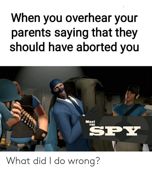 Parents, Dank Memes, and Spy: When you overhear your  parents saying that they  should have aborted you  Meet  THE  SPY What did I do wrong?