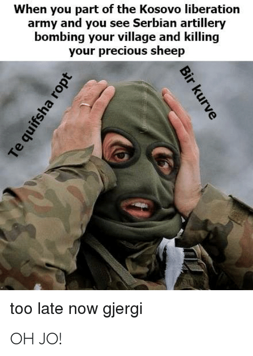 Precious, Army, and History: When you part of the Kosovo liberation  army and you see Serbian artiller  bombing your village and killing  your precious sheep  too late now gjergi OH JO!