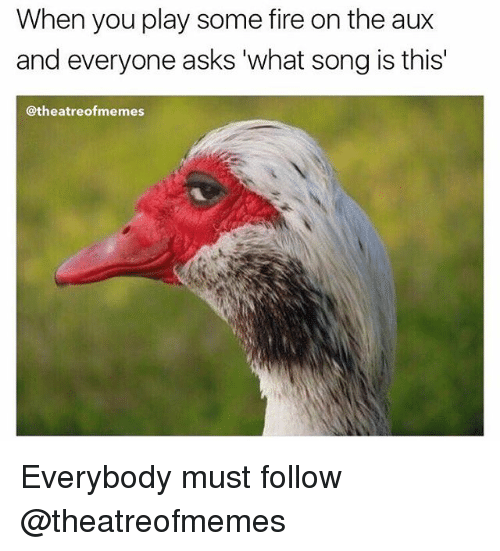 Fire, Memes, and Asks: When you play some fire on the aux  and everyone asks what song is this'  @theatreof memes Everybody must follow @theatreofmemes
