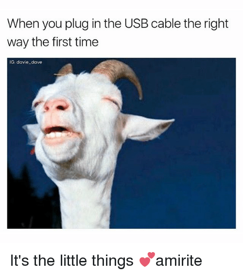 Funny, Time, and Usb: When you plug in the USB cable the right  way the first time  IG: davie dave It's the little things 💕amirite