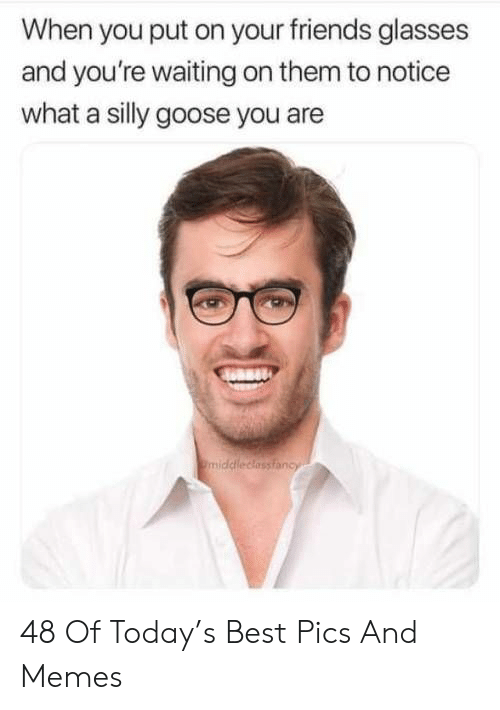 Friends, Memes, and Best: When you put on your friends glasses  and you're waiting on them to notice  what a silly goose you are  middleclassiancy 48 Of Today's Best Pics And Memes