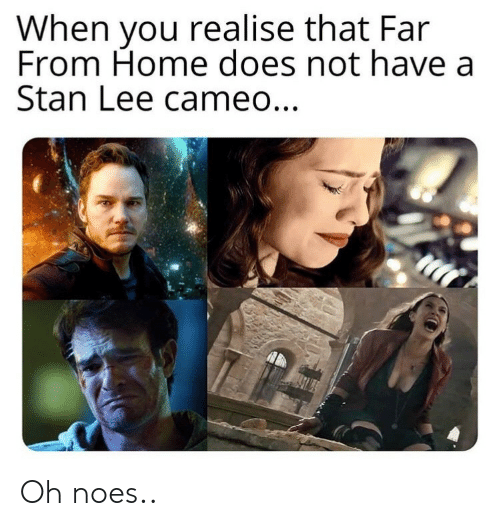 Stan, Stan Lee, and Home: When you realise that Far  From Home does not have a  Stan Lee cameo... Oh noes..