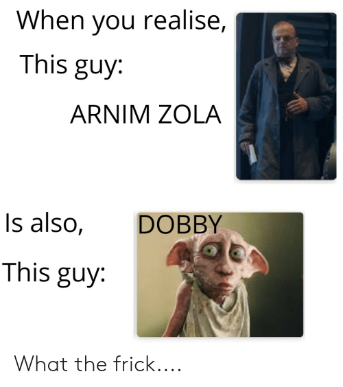 Frick, Reddit, and Zola: When you realise,  This guy:  ARNIM ZOLA  DOBBY  Is also,  This guy What the frick....