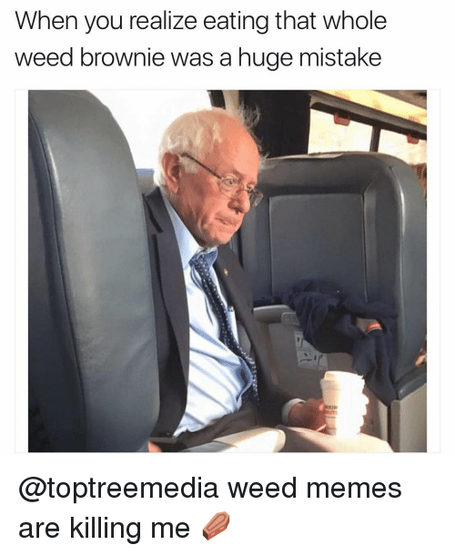when you realize eating that whole weed brownie was a 6708851 ✅ 25 best memes about weed brownies weed brownies memes