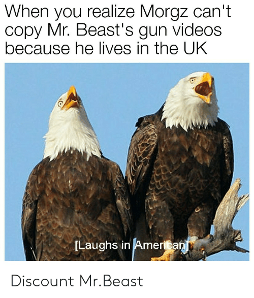 Videos, Gun, and Beast: When you realize Morgz can't  copy Mr. Beast's gun videos  because he lives in the UK  ILaughs in Ameritan Discount Mr.Beast
