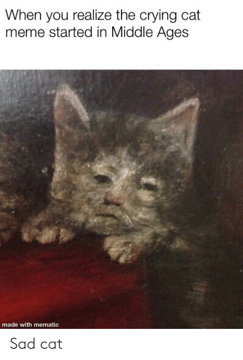 When You Realize the Crying Cat Meme Started in Middle ...