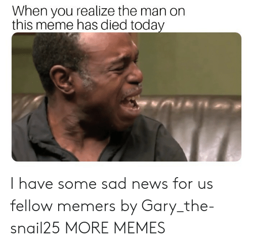 Dank, Meme, and Memes: When you realize the man on  this meme has died today I have some sad news for us fellow memers by Gary_the-snail25 MORE MEMES