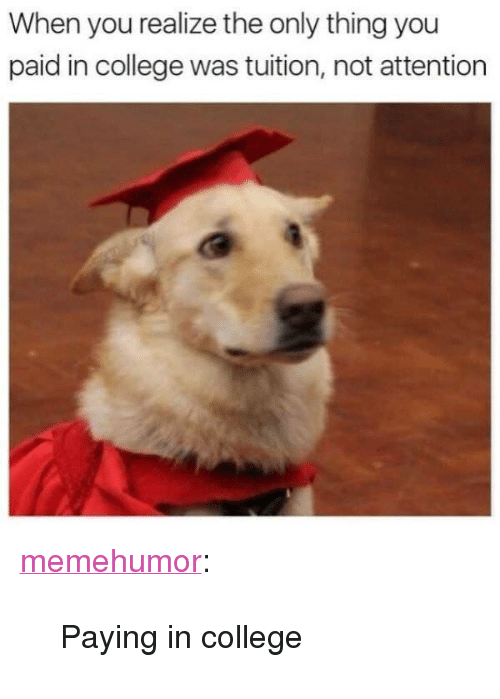 """College, Tumblr, and Blog: When you realize the only thing you  paid in college was tuition, not attention <p><a href=""""http://memehumor.net/post/168868957274/paying-in-college"""" class=""""tumblr_blog"""">memehumor</a>:</p>  <blockquote><p>Paying in college</p></blockquote>"""