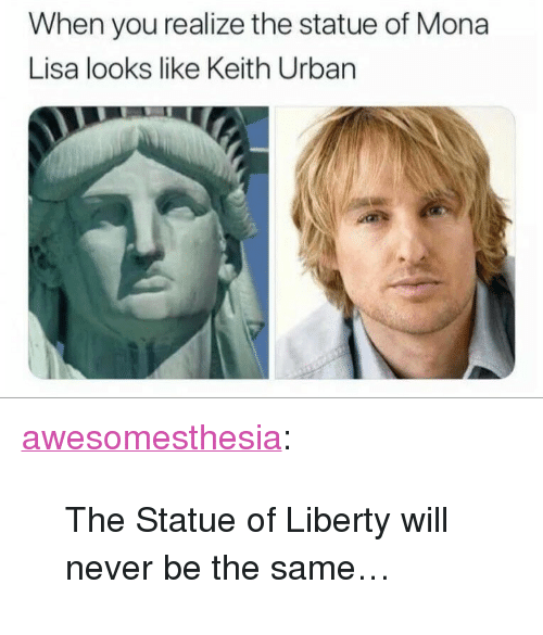 "Tumblr, Mona Lisa, and Blog: When you realize the statue of Mona  Lisa looks like Keith Urban <p><a href=""http://awesomesthesia.tumblr.com/post/173290027132/the-statue-of-liberty-will-never-be-the-same"" class=""tumblr_blog"">awesomesthesia</a>:</p>  <blockquote><p>The Statue of Liberty will never be the same…</p></blockquote>"