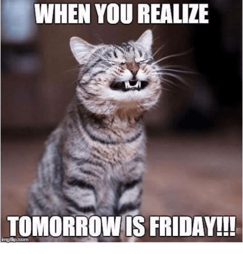 Friday, Memes, and Tomorrow: WHEN YOU REALIZE  TOMORROW IS FRIDAY!!!