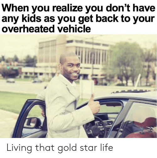 Life, Kids, and Star: When you realize you don't have  any kids as you get back to your  overheated vehicle Living that gold star life