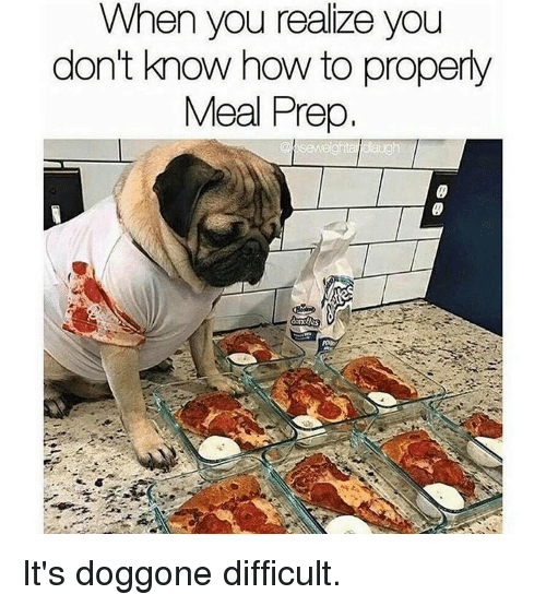 Memes, 🤖, and Prepping: When you realize you  don't know how to properly  Meal Prep. It's doggone difficult.