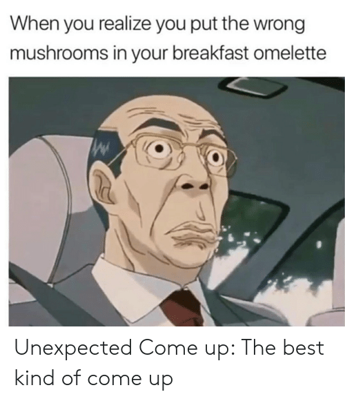 Best, Breakfast, and Drug: When you realize you put the wrong  mushrooms in your breakfast omelette Unexpected Come up: The best kind of come up