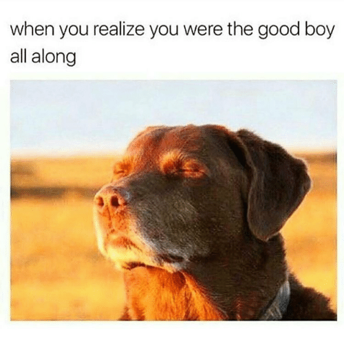Good, Boy, and All: when you realize you were the good boy  all along