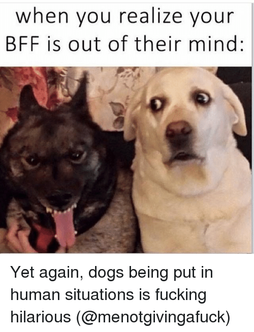 Dogsing And Funny When You Realize Your Bff Is Out Of Their