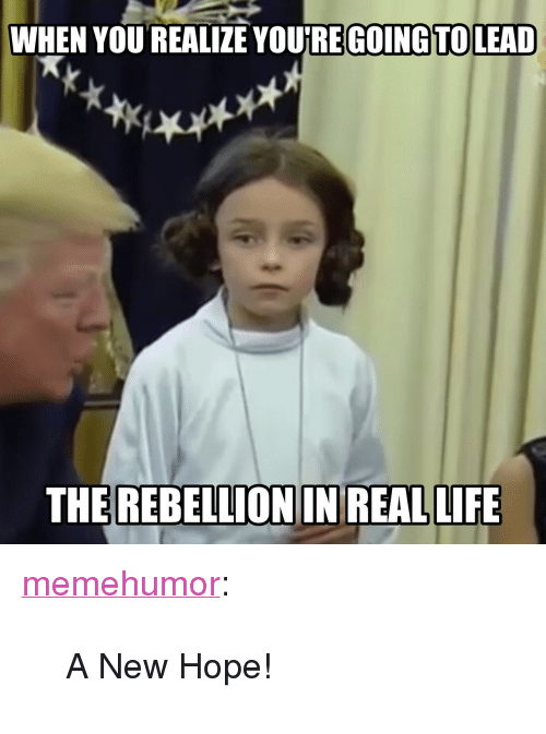 """Life, Tumblr, and Blog: WHEN YOU REALIZE YOURE GOING TOLEAD  THE REBELLION IN REAL LIFE <p><a href=""""http://memehumor.net/post/166909644302/a-new-hope"""" class=""""tumblr_blog"""">memehumor</a>:</p>  <blockquote><p>A New Hope!</p></blockquote>"""