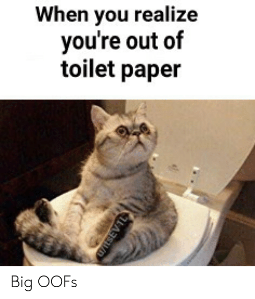 When You Realize You're Out of Toilet Paper Big OOFs   Big Meme on ME ME