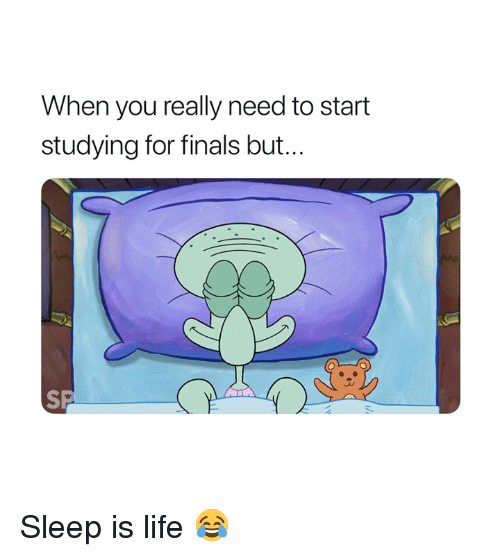 Finals, Life, and Sleep: When you really need to start  studying for finals but... Sleep is life 😂