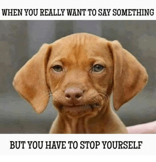 [Image: when-you-really-want-to-say-something-bu...979476.png]
