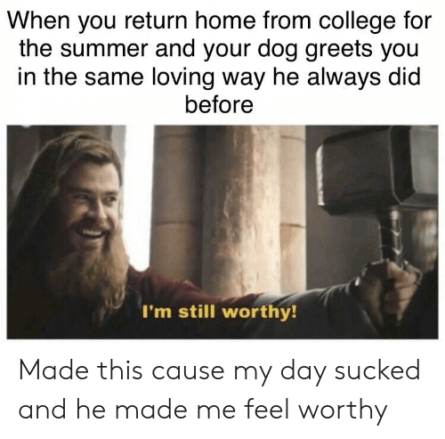 College, Summer, and Home: When you return home from college for  the summer and your dog greets you  in the same loving way he always did  before  I'm still worthy Made this cause my day sucked and he made me feel worthy