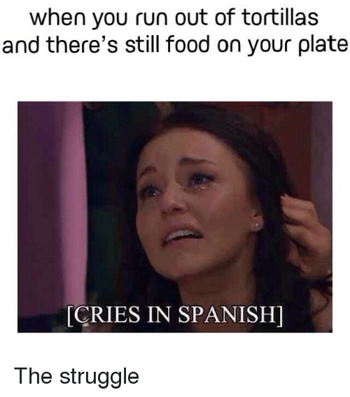 Crying, Food, and Funny: when you run out of tortillas  and there's still food on your plate  CRIES IN SPANISH) The struggle